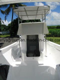 Liya 25 футов Японии судов Twin двигатель на лодке