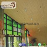설계된 천장 프로젝트를 위한 WPC 천장 지구 틀린 천장