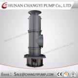 Pompa Mixed verticale di flusso per il rifornimento idrico di ingegneria civile