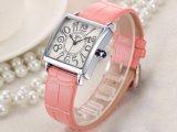Caixa da liga/relógio material do relógio OEM/ODM do couro genuíno do relógio aço inoxidável