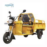 1000W 500kgs 짐 인도 방글라데시에 있는 전기 화물 세발자전거