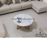 居間デザインの円形のコーヒーテーブル