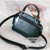 Новый стиль дамы сумочку женщина женская сумка для девочек PU сумку с оптовых цен на Си8676