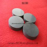 Disco de cerámica del nitruro de silicio de Cnm