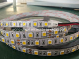 Grande indicatore luminoso di striscia luminoso eccellente del chip SMD5050 LED del LED