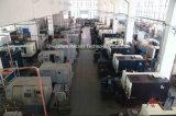 중앙 진공 시스템 기계를 위한 well-fitting 옆 채널 통신로 공기 송풍기 진공 모터