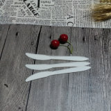 Biodegradierbares Tafelgeschirr WegwerfComposable Messer