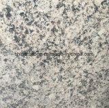 中国の人気のあるカラー壁およびタイルのための磨かれた花こう岩のタイル