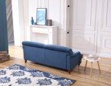 Conjuntos al aire libre modernos del sofá del diseño simple de los muebles del jardín