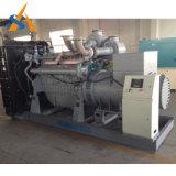 Générateur diesel silencieux du professionnel 260kVA