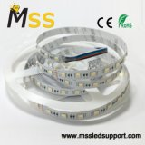Tira de LEDS/TIRA DE LEDS/Flexible TIRA DE LEDS RGBW (4 de 1 chips)