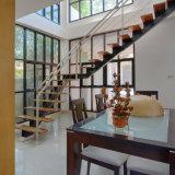 Diseños del pasamano de la escalera con las escaleras del pasamano de cristal de la escalera de cristal/del acero inoxidable con el paso de progresión de madera sólida