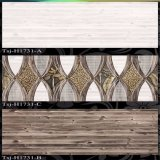 Azulejos de cerâmica interior (250x400)