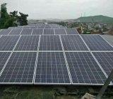Poli comitato solare 100W del modulo solare policristallino poco costoso con Ce RoHS TUV certificato