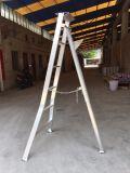 Punto del triangolo invertito alluminio che salda la scaletta agronomica del metallo per Graden