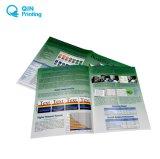 中国の安いステープルカラーパンフレットの印刷