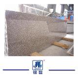 Het Natuurlijke Opgepoetste G664 Graniet van China voor Countertops van de Keuken/Muur/Bevloering/Tegel/Countertop/van de Trede van de Keuken Stappen/Steen van /Paving van de Grafsteen/van de Fontein/van de Ijdelheid de Hoogste