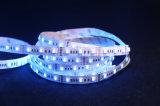 SMD5050 Rgbwwのカラー世界LEDに魔法のデジタル滑走路端燈をするネオン屈曲140LEDs 22.4W/Mの高い明るさ