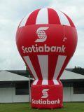 De openlucht Reus die van Oxford de Opblaasbare Ballon van de Grond voor Bevordering adverteren