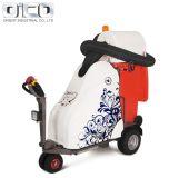 Vassoura de grama de combustível elétrica puro Calçada Aspirador do pavimento