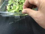 واضحة بلاستيكيّة نباتيّ وعاء صندوق صندوق مع غطاء