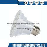Couleur 12V 120V LED R20 Ampoule de rechange pour Pentair Hayward Fixture SPA