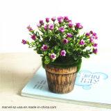 花のプラント園芸植物のAglaiaの優雅なOdorataの人工的なプラントBonsai
