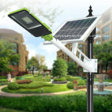 リモート・コントロールの太陽LEDの街灯の屋外の庭公園の省エネライト