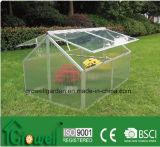Nova estrutura de frio de vidro 1200 X 800 mm C434