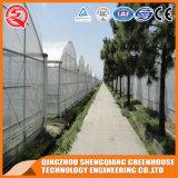 De hete Plastic Serre van de Groenten van China van de Verkoop met Hydroponic Systeem