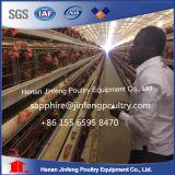 Vente 2017 chaude de l'Afrique cages de poulet de couche de cage/modèle de batterie de poulet de 3/4 couche