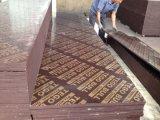 Le film de Brown de faisceau de peuplier/bouleau/bois dur a fait face au contre-plaqué pour la construction (HBB202)