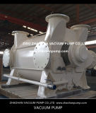 pompe de vide de boucle 2BE3520 liquide pour l'industrie du papier
