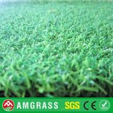 フットボールPlayground GrassおよびSynthetic Turf (AC2-12PA)