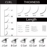Cigli sintetici luminosi dell'individuo della sferza dell'occhio falso di falsificazione di trucco del visone di estensione 0.07/0.1/0.15/0.2mm dei cigli