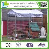 Блок проволочной изгороди утюга дешевый 5 псарен собаки с разделами бега сетки