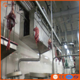 Riga strumentazione di macellazione del maiale della Camera di macello di macellazione del maiale della macchina di macellazione del maiale