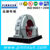 Grande motore a tre fasi ad alta tensione sincrono di induzione elettrica di CA del laminatoio di sfera di T Tk Tdmk