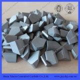 Dentes duros da estaca do carboneto de tungstênio do uso de Mulcher
