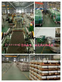 Stainless Steel Coil 304 2b