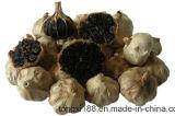 Clous de girofle entiers chinois d'ail noir pour la qualité