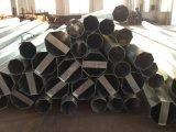Stahl Pole des Entwurfs-Preis-45ft