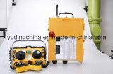 La strumentazione speciale Radio Remote senza fili industriale gestisce F24-60