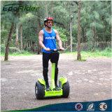2016 Ecorider adultos off road en dos ruedas Auto equilibrar Scooter eléctrico