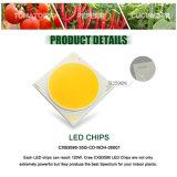 Dimmable CREE Cxb3590 600W 72000lm leiden van de MAÏSKOLF kweekt Licht Volledig Spectrum = het Groeien HPS 1000W Lamp