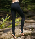 Vente en gros Custom Fitness Ladies Pants Spandex Yoga Pants