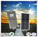 12W Panel Soalr Impermeable IP65 Calle luz LED para exteriores