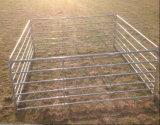 미국 5foot*12foot에 의하여 직류 전기를 통하는 강철 목장 가축 위원회 또는 말 가축 위원회