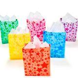 Sac de papier de cadeau, sac de papier d'emballage, sac de cadeau d'impression de gel, sac de cadeau