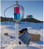 1kw Maglevの縦の風車の格子システム